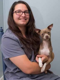 CJ McCloy - Faulkville Animal Hospital - Bloomingdale, GA