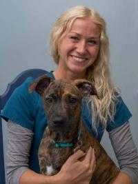 Katy Lorenz - Faulkville Animal Hospital - Bloomingdale, GA