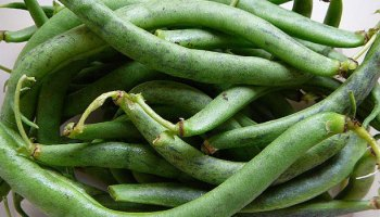 From Beef To Beans: Mitigating Climate Change