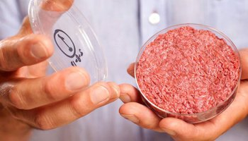 The Naturalness Concern: An Upcoming Study About Clean Meat