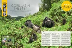 Rwanda gorilla trekking Hot List Travel