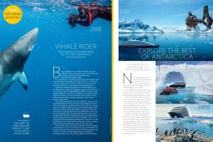 Swim with minke whales Hot List Travel