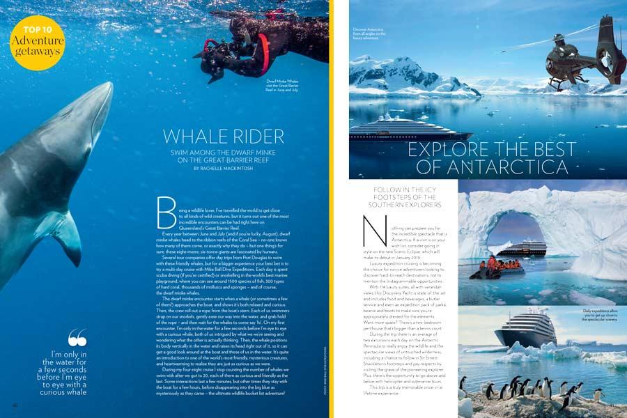 Swim with minke whales Hot List Travel