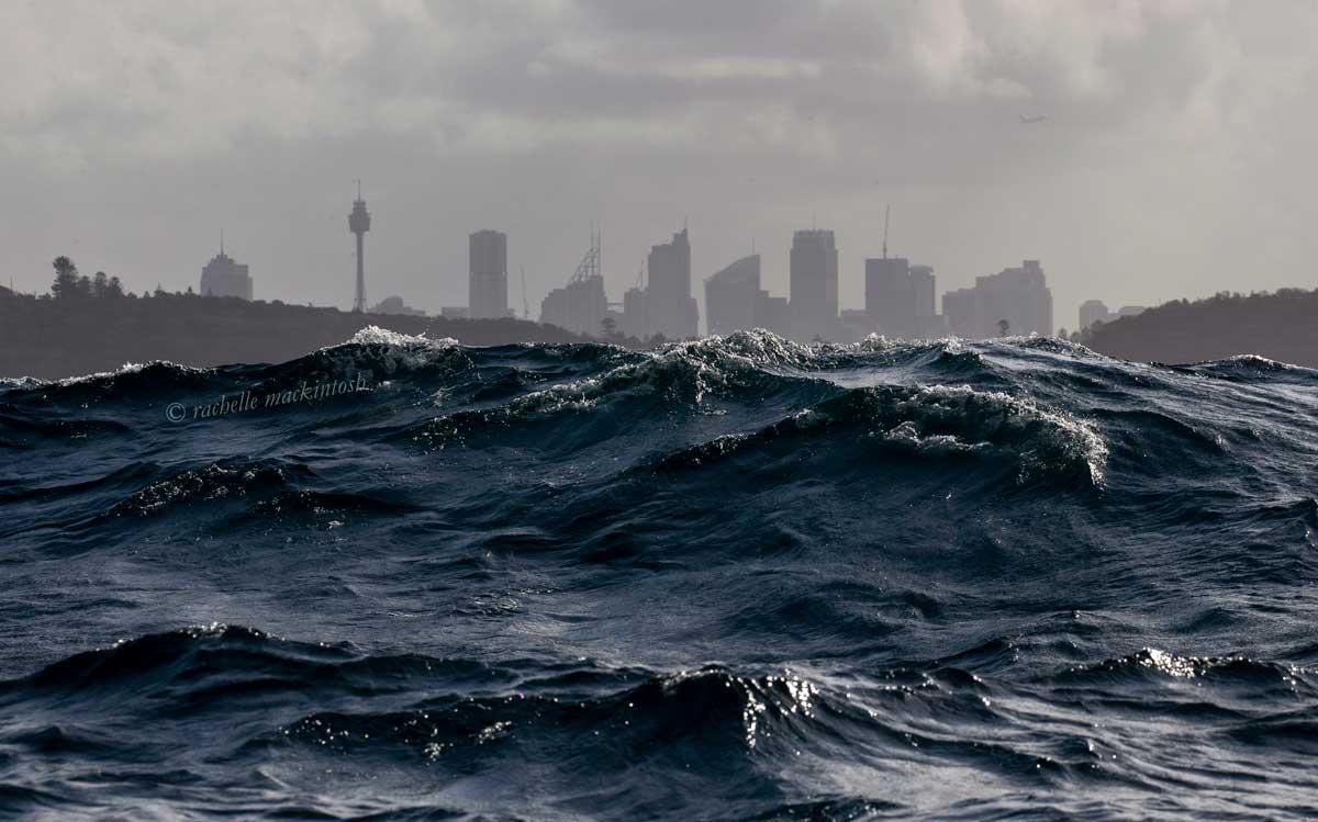 Sydney tasman sea
