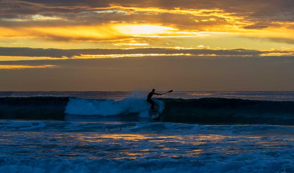 maroubra paddleboard sunrise sydney