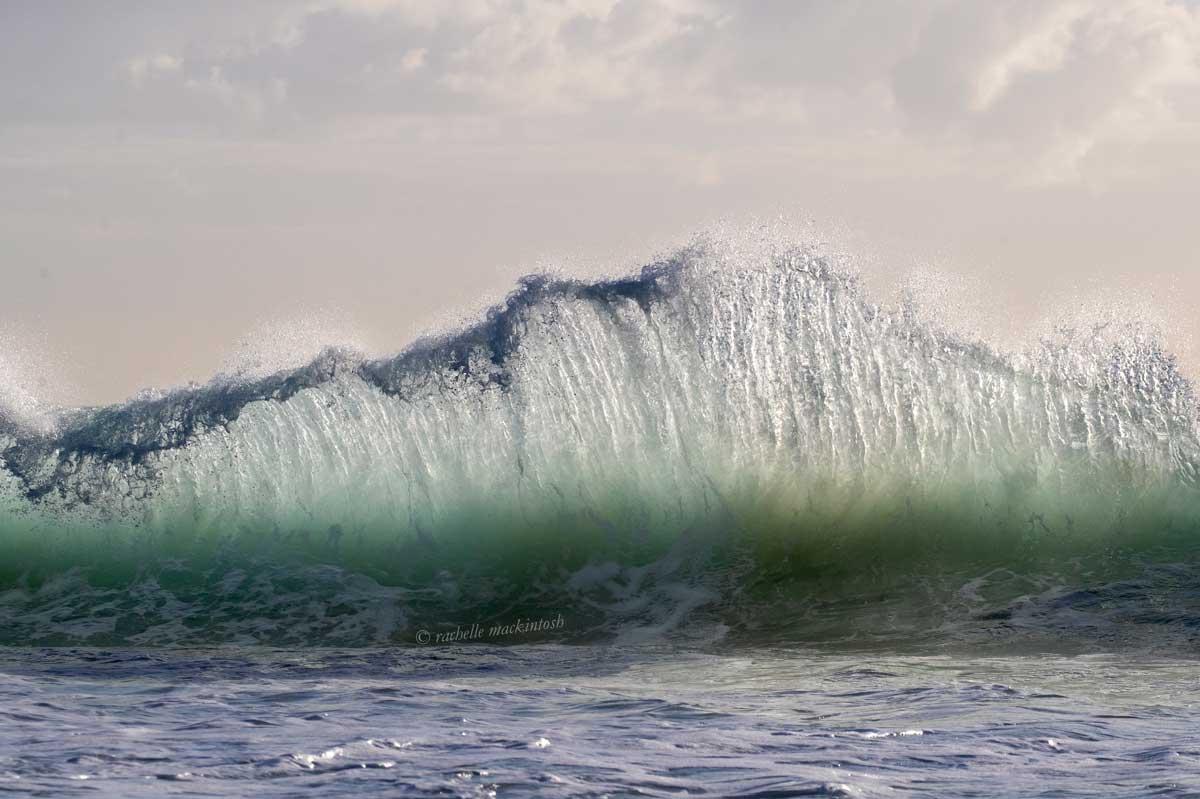 maroubra wave morning surf
