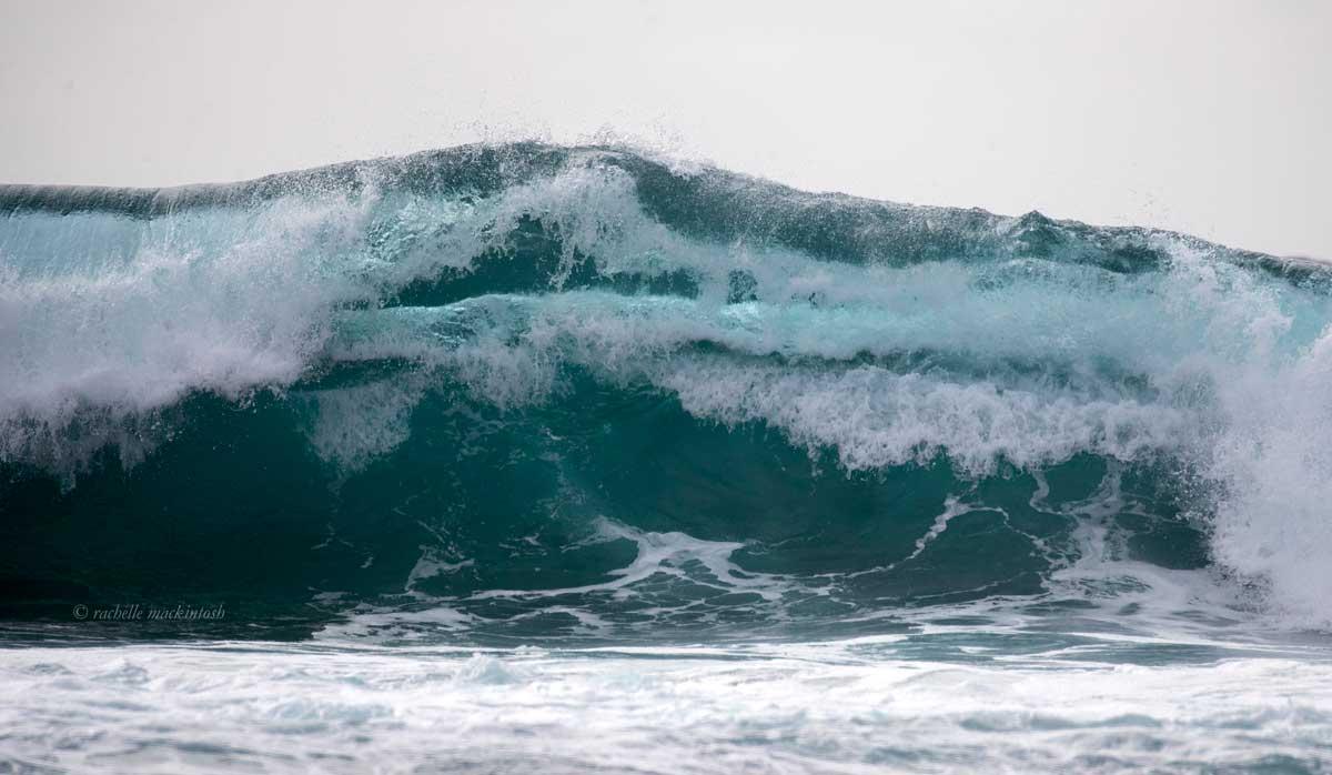shore break surfing wave bronte sydney