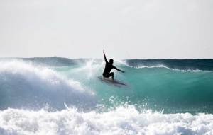 surfing maroubra sydney