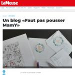 Le Blog Faut pas pousser MamY dans la presse