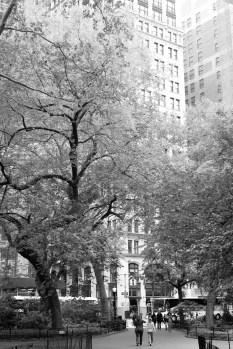 """""""Madison Square"""" Leica M-P, Summilux 50mm"""