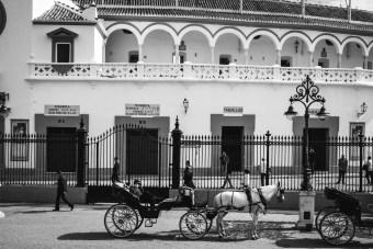Oldest Bull fighting ring in Sevilla