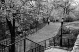 Atop Jackie Robinson Park