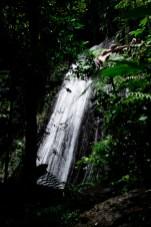 """Coca Falls"" / El Yunque / Leica M-P / Summilux 50mm"