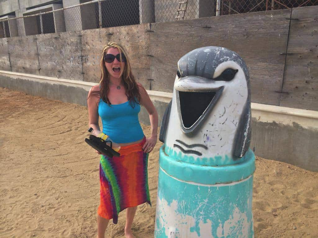 Scary Dolphin trash can