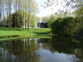 L'étang bien rempli