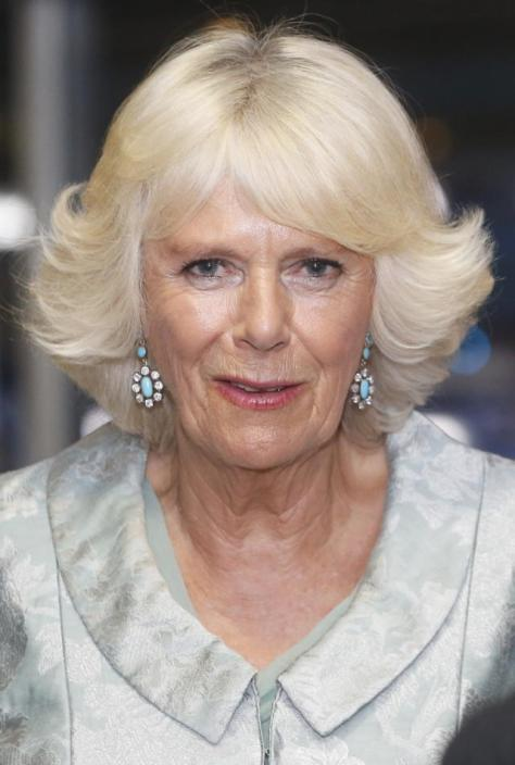 GLASGOW, SCOTLAND - JULY 23: Camilla, Duchess of Rothesay during a reception at the Opening Ceremony of the Glasgow 2014 Commonwealth Games at Celtic Park on July 23, 2014 in Glasgow, Scotland. (Photo by Danny Lawson/WPA Pool/Getty Images)