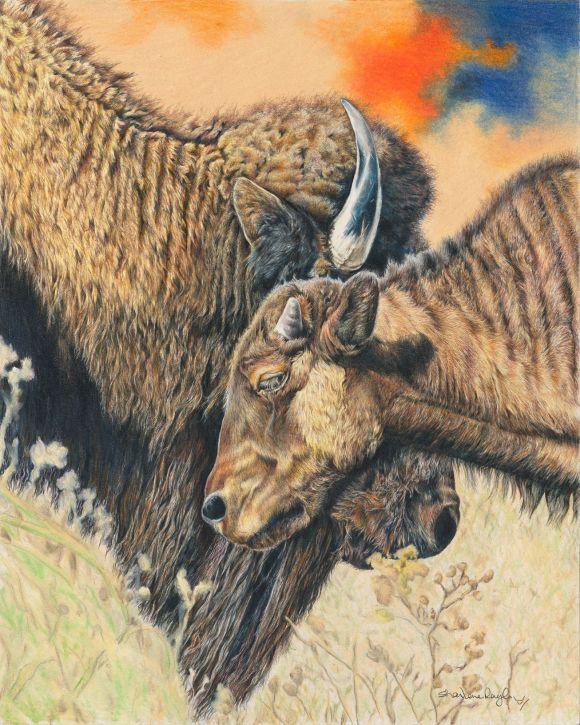 Bison by Sharlene Rayl
