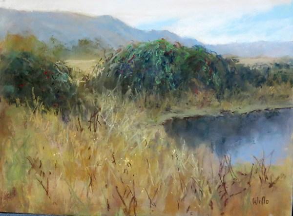 Blackberry Pond by Willo Balfrey