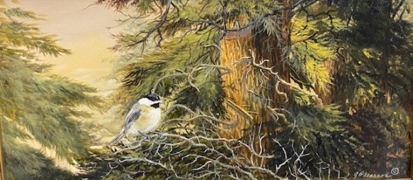 Chicadee in the Pines by Judy Phearson