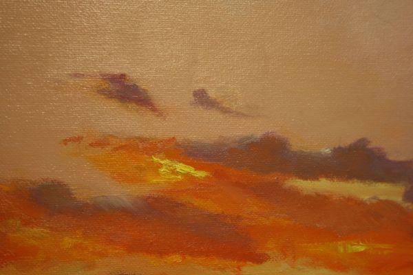 (Close-up) Joyous Sunrise by Janice Druian