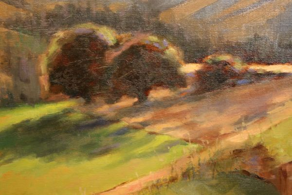 (Close-up) Light and Shadows in Lake Creek by Charity Hubbard