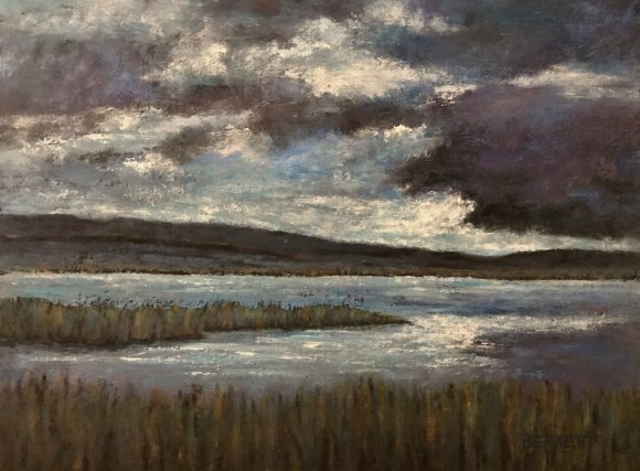 Storm Coming by Sue Bennett
