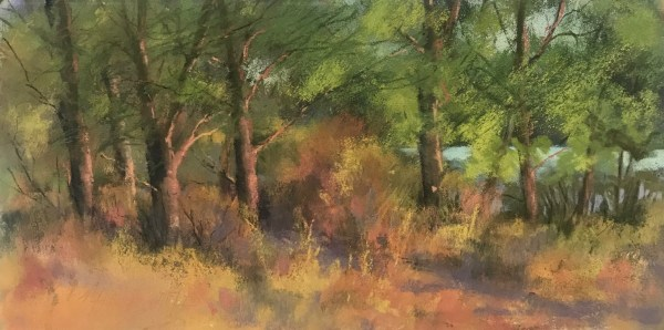 Summer Light by Bonnie Griffith