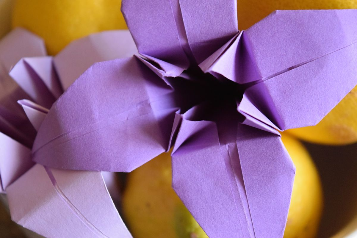 5 Reasons Folding An Origami Lily Is Better Than Gardening Flowers