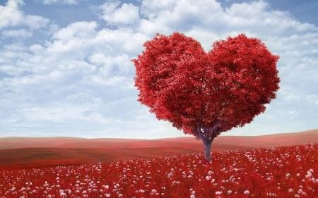 30 Versets Bibliques Sur L Amour De Dieu Vivre Une Vie De