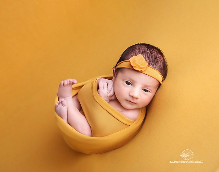 baby girl newborn photos Brisbane