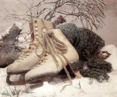 https://i1.wp.com/favim.com/orig/201106/28/branches-frost-ice-skating-scarf-skates-snow-Favim.com-86433.jpg