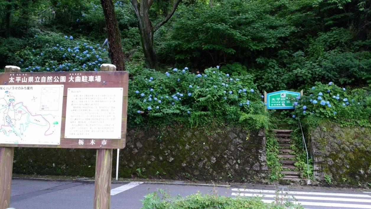 大平山 あじさい坂駐車場
