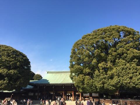 初詣の賑わい日本一の神社は時期ズレがおすすめ?スピリチュアルな木々たちから今年の運気をいただく。「明治神宮」を歩く。