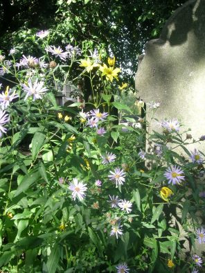 st-cuthberts-cemetery-edinburgh-west-end-scotland_4959305085_o
