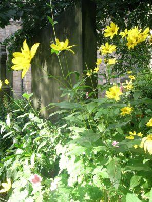 st-cuthberts-cemetery-edinburgh-west-end-scotland_4959901720_o