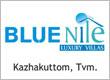Blue Nile Logo