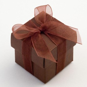 Brown Silk Square Favour Box with Lid
