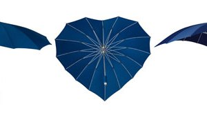 Heart Umbrellas - Navy Blue