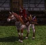 Mit Feuerwerkskörpern beladenes Pony