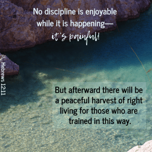 Discipline is good?