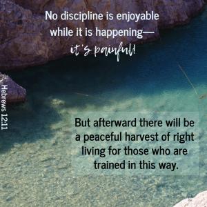 Discipline is good?