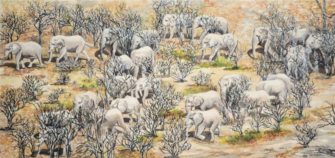 'The herd on the move', watercolours on paper, Elephants by Faye Edmondson