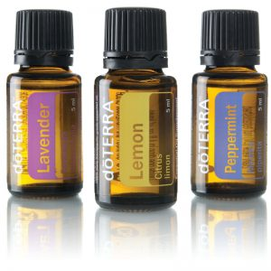 Fayi Cookbooks doTerra Introductory Kit