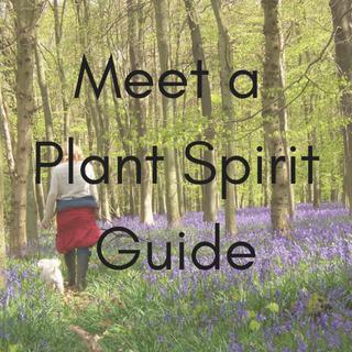 Plant Spirit Magic Workshop Upminster
