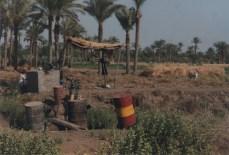 Fayoum-Egypt (17)