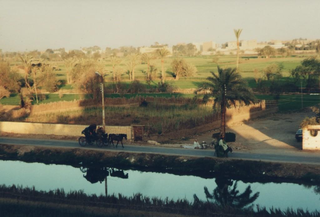 Fayoum-Egypt
