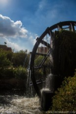 Largest Water Wheel in Egypt (10)