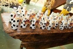 Doces-aniversário-tema-Fazendinha-Country-São-João-73 Idéias para festa Infantil com tema Fazendinha para meninos e meninas
