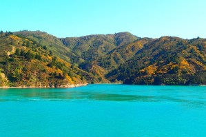 Chegando na ilha sul da Nova Zelândia