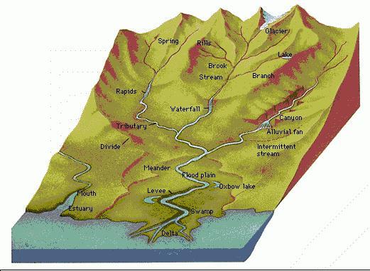 Hva er en elv delta